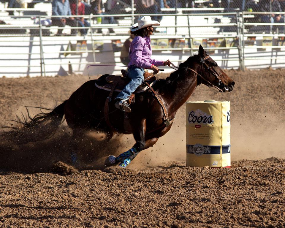 Maker: Mary Ann Roesler  -- 30 points  Judge's comments: Good stop-action. The mounting is crooked and the backing shows.Maker's comments: This photo was taken at the Tucson Rodeo.  Women's barrel racing.  The horse is really concentating on winning.