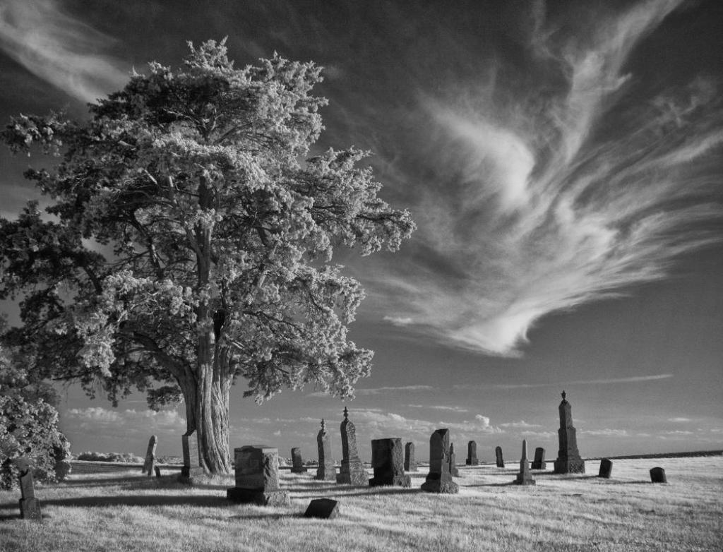 Maker: John Zoerb Entered in: 2016 February Competition - A Prints Score: 37 points  1st PlaceJudge's comments: Great composition; tree well-placed; nice tonal range; great time of dayMaker's comments:
