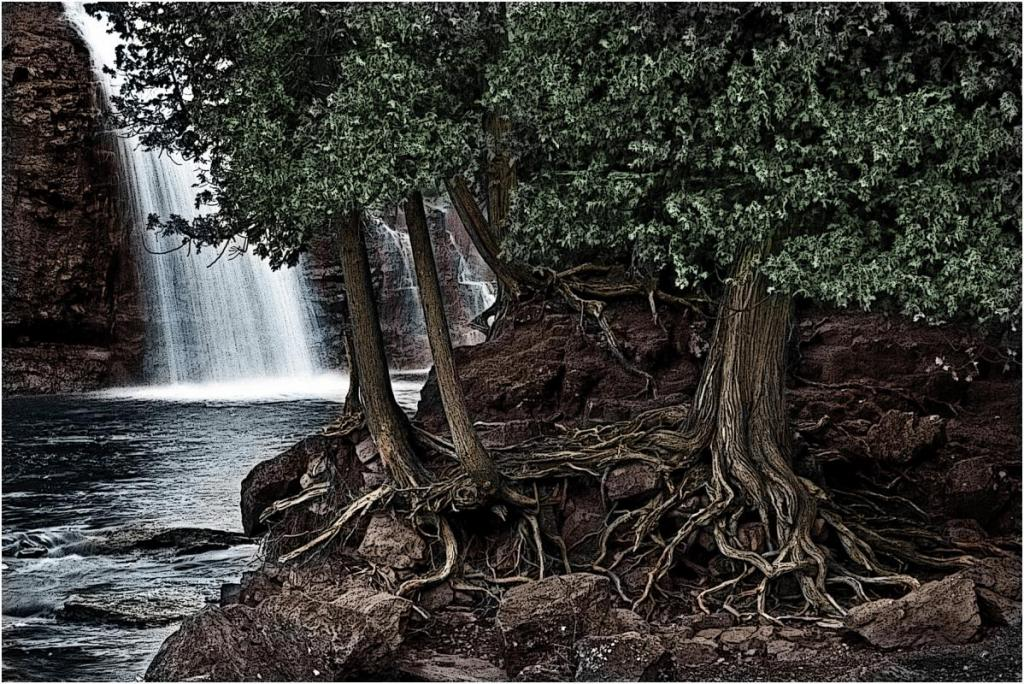 Maker: Debbie Abraham Entered in: 2016 February Competition - A Creative Score: 40 points  1st PlaceJudge's comments: Great texture in the roots; sharp; waterfall is a good point of interest; excellent creative treatmentMaker's comments: