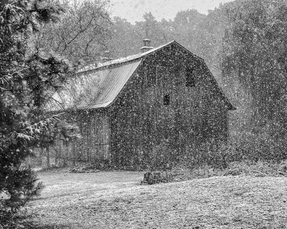 Maker: Brian Narveson  -- 35 points  2nd PlaceJudge's comments: Snow works well.Maker's comments: HDR Photo of barn taken during rare October snow fall.  3 exposures taken +/-1.33 stops from center setting.  Center setting was Aperture Priority set to f/5.6, ISO-800.  Resulting exposure was 1/125/sec.  Lens set to 35mm.  HDR processing and black and white conversion done in Aurora HDR 2019.  Final editing done in Photoshop CC.