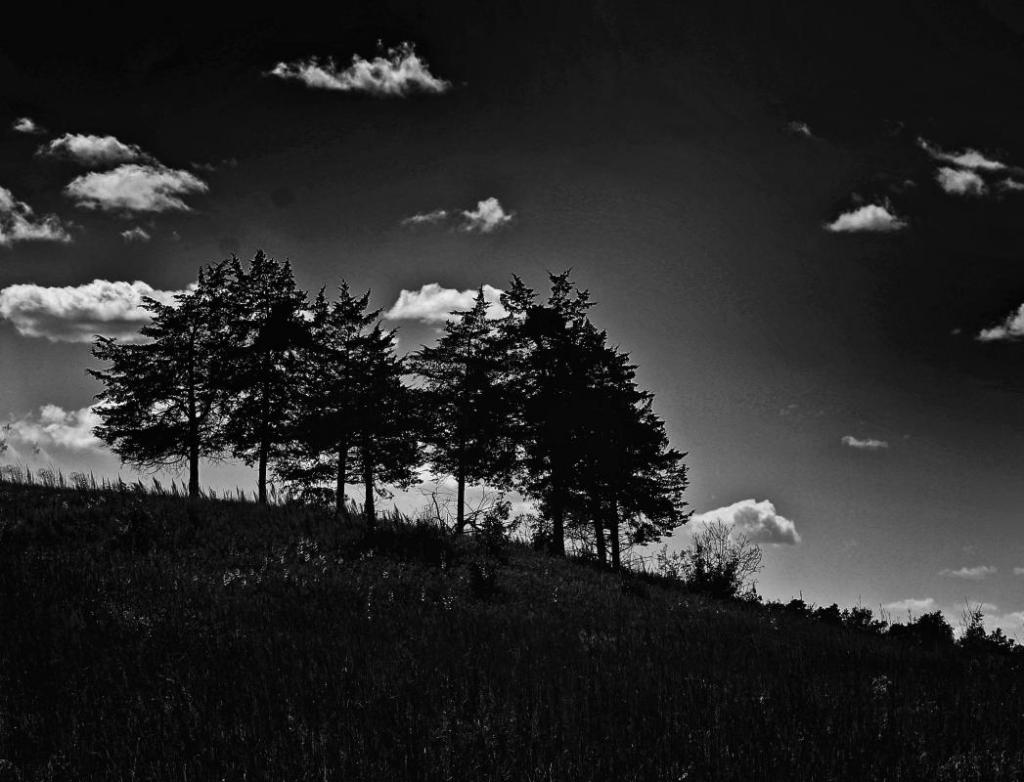 A - Prints Black and white printsMaker: Eileen Roesler  -- 28 points      Judge's comments: Like the slope of the terrain; the clouds add interest to the sky; might like to see the sky a little lighter; the white border enhancesMaker's comments: