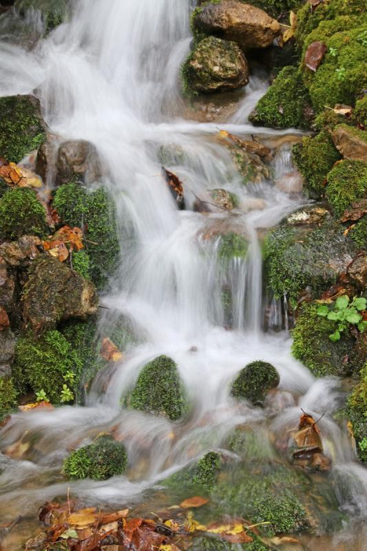 A - Nature Maker: Kristi Olson  -- 26 points      Judge's comments: Water is handled very well; nice diagonal flow; very sharp; beautiful moss; could crop top to the first poolMaker's comments: