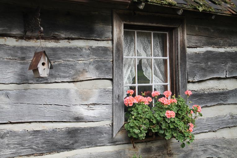 Maker: Eileen Roesler  -- 30 points      Judge's comments: Flowers are a pleasing color; window nicely placed in photo; logs lead to the window; eye seems to stop at the birdhouse Maker's comments: